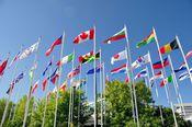 国際金融センターへの挑戦と信託