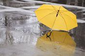 雨が降ったら傘を差し出す金融へ