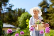 自営業者の引退の花道